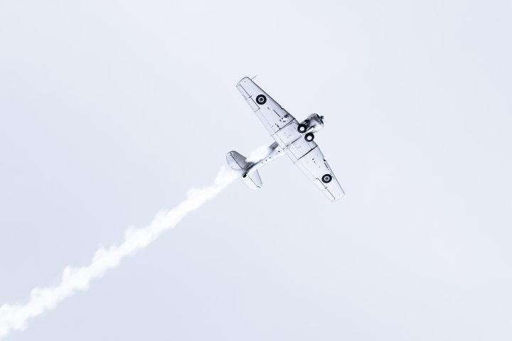 Harvard Flyover Mono - A classic Harvard aircraft flying over Napier, New Zealand for Art Deco 2020.
