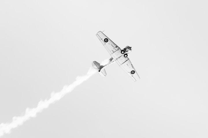 Harvard Flyover B&W - A classic Harvard aircraft flying over Napier, New Zealand for Art Deco 2020.